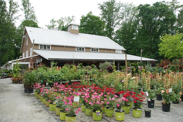 Scottsdale Farms Garden Center