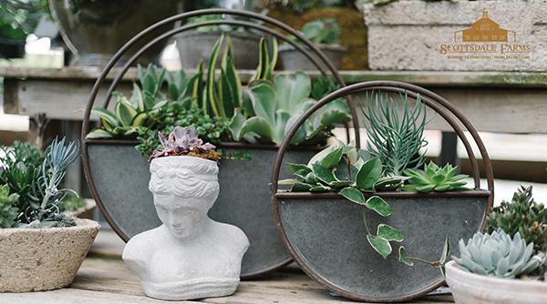 Scottsdale Farms Floral Design