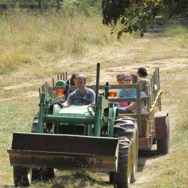Hayrides at Scottsdale Farms!