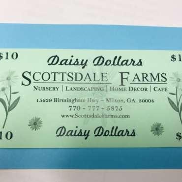Daisy Dollar Time